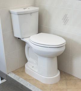 toiletwithplatformWP
